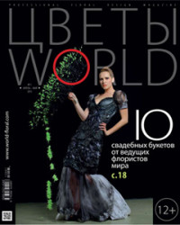 magazin2